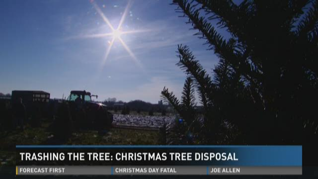Macon Ga Christmas Tree Drop Off Kroger 2020 Trashing the tree: Christmas tree disposal in Bibb   13wmaz.com