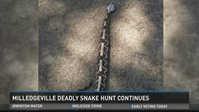 Milledgeville deadly snake hunt continues