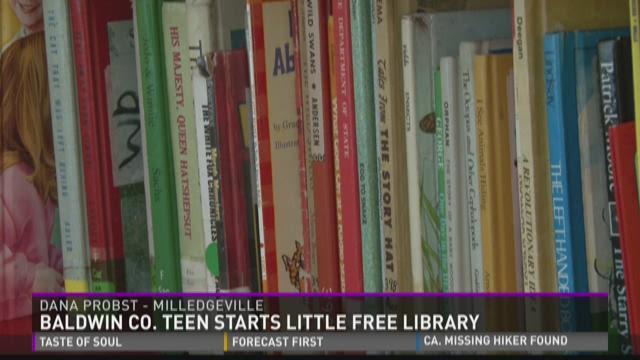 Baldwin teen starts Little Free Library