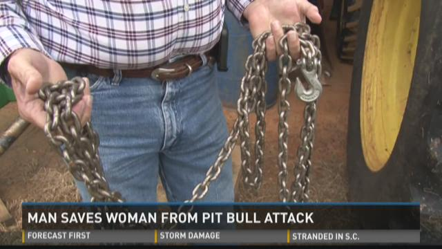 Man saves woman from pit bull attack